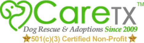 CareTX.org | Dog Rescue and Adoptions